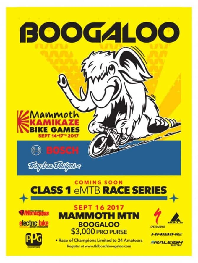 Troy Lee Designs Race Series Boogaloo at Kamikaze Bike Games